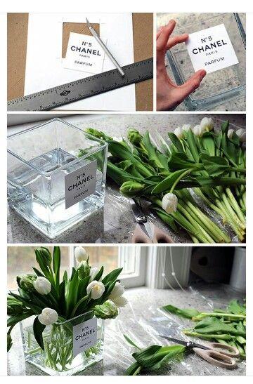 Plant holder |