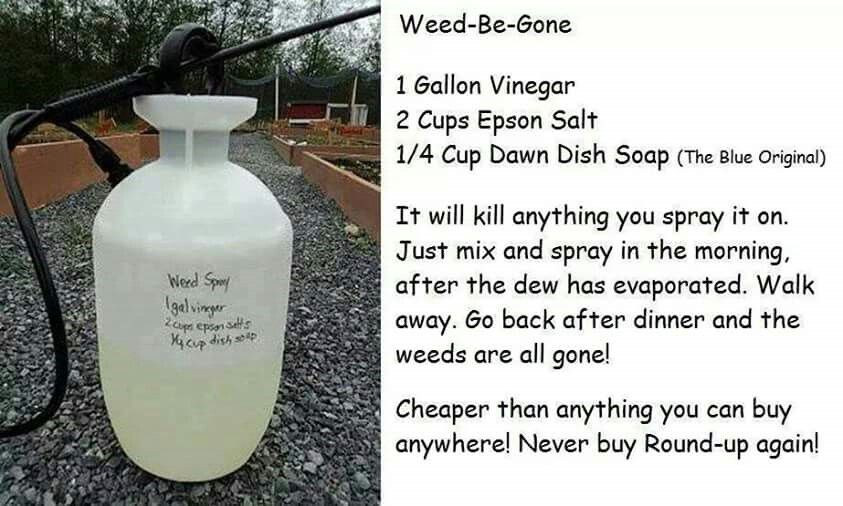 Weed Be Gone