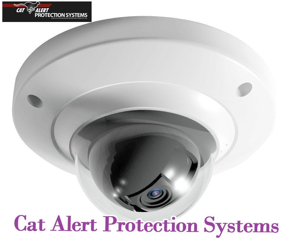 http://www.catalert.in/cctv.html Cat Alert Protection Systems ...
