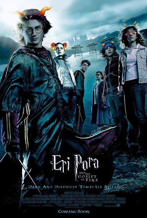 Pin Von Confused Ghost Auf Homestuck Harry Potter Poster Harry Potter Film Feuerkelch