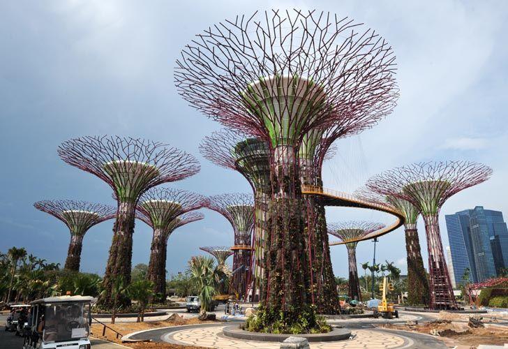 """Los """"superárboles"""" de Singapur"""