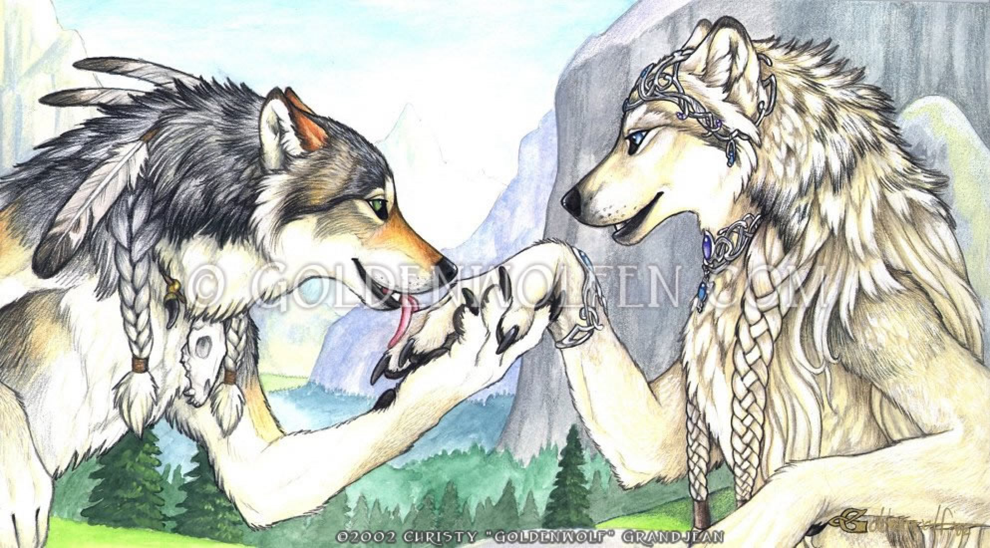 Ailah and mahican by goldenwolf on deviantart wolf and