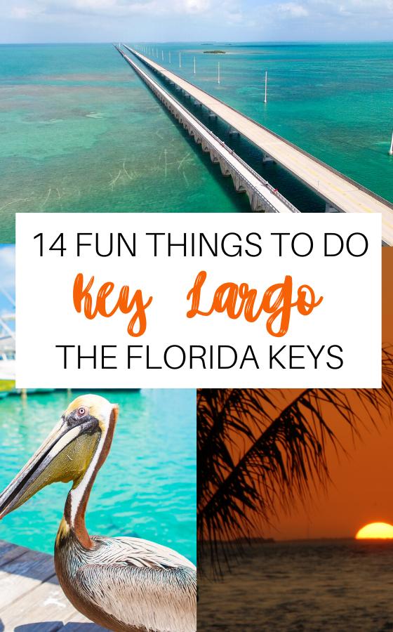 19 Fun Things To Do In Key Largo Florida Keys Don T Miss These Spots In 2020 Key Largo Florida Florida Keys Florida Keys Travel