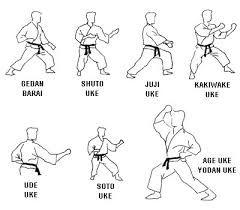 Resultado de imagen para posiciones de karate