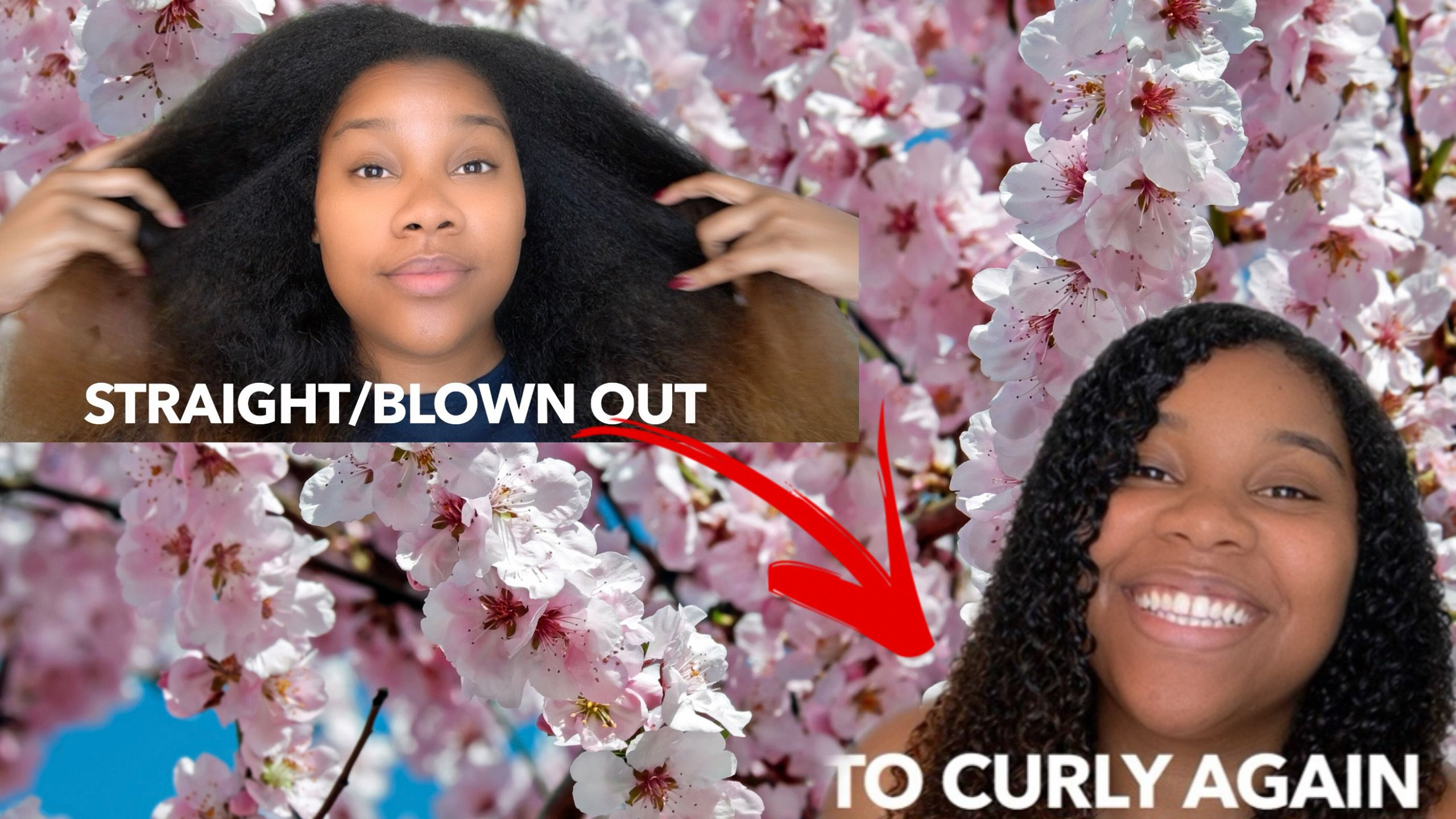 Getting my curls back! Hydration, scalp scrubs & more! #curls #curlyhair #straighttocurly #howto #ashsetstrends #youtube #beautytips #curly