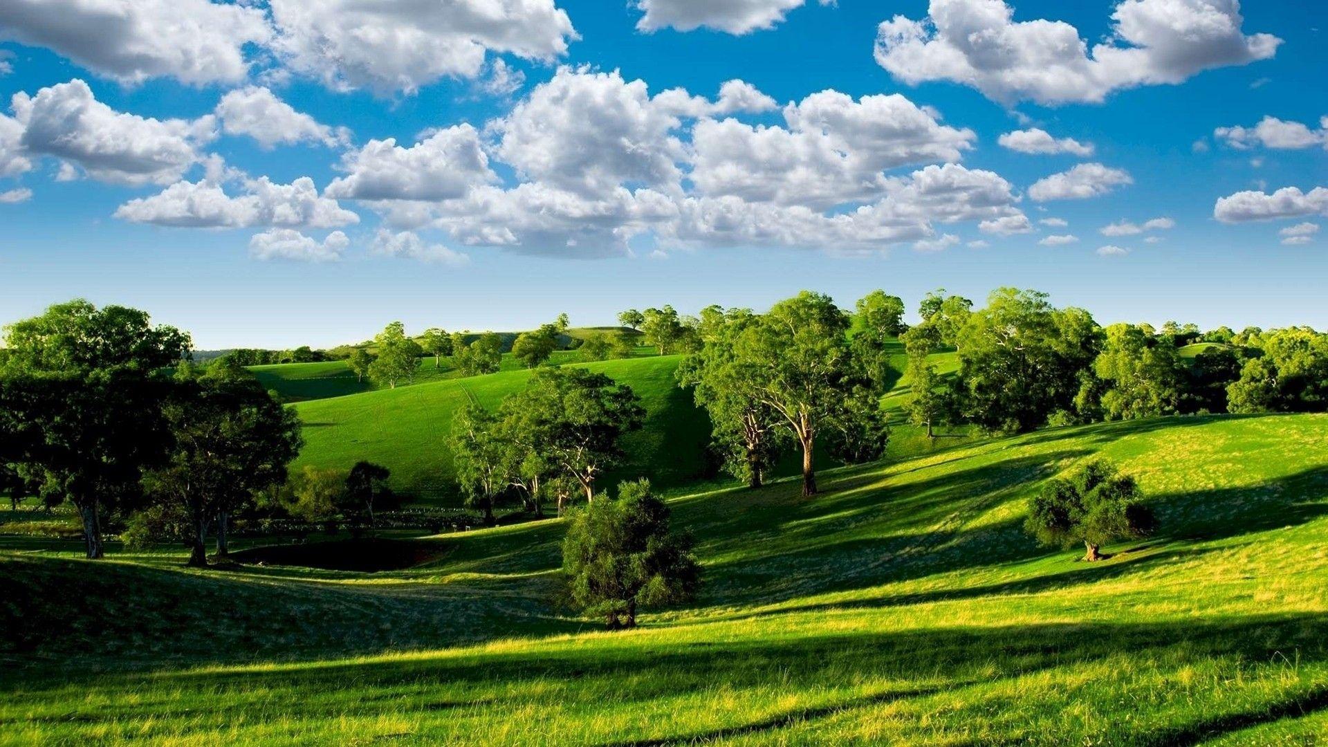 Hd Landscape Desktop Wallpaper Natura