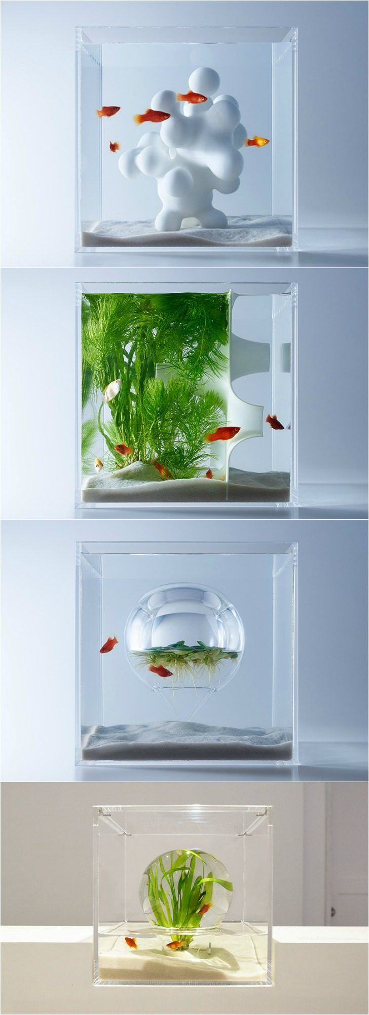 Artistic aquariums from haruka misawa poissons aquarium for Poisson decoration aquarium