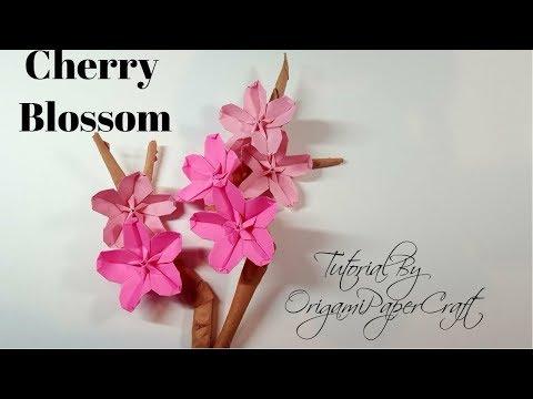 Origami Tutorial - How to fold Origami Cherry Blossom - YouTube | 360x480