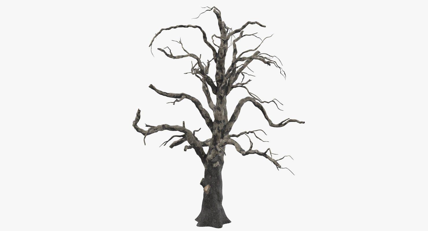Old Dead Tree 03 3d Model 3d Model 3d Tree Tree