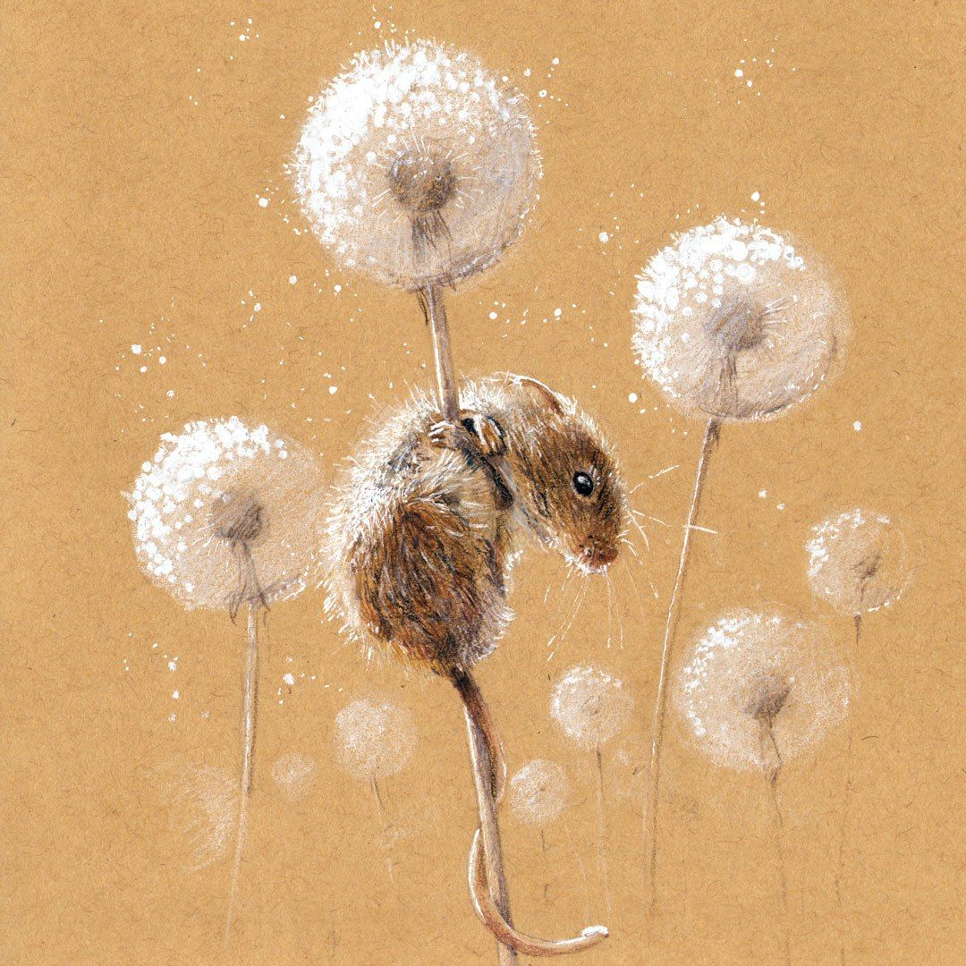 Beautiful paintings and illustrations