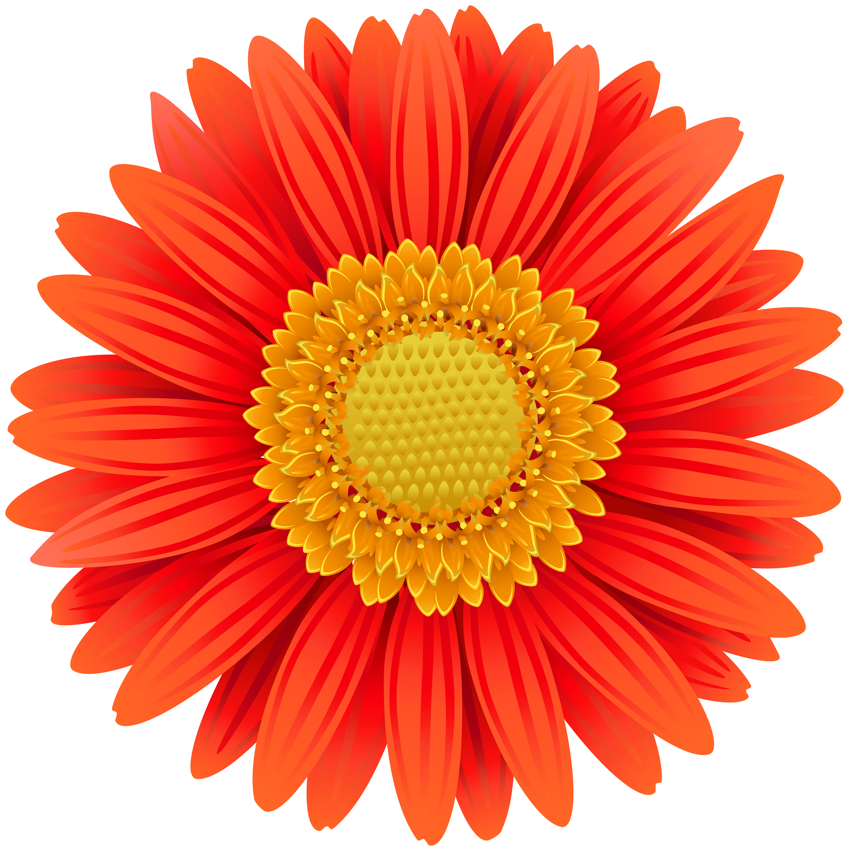 Orange Gerbera Transparent Clip Art Png Image Gallery Yopriceville High Quality Images And Transparent Pn Flower Drawing Design Clip Art Flower Stationary