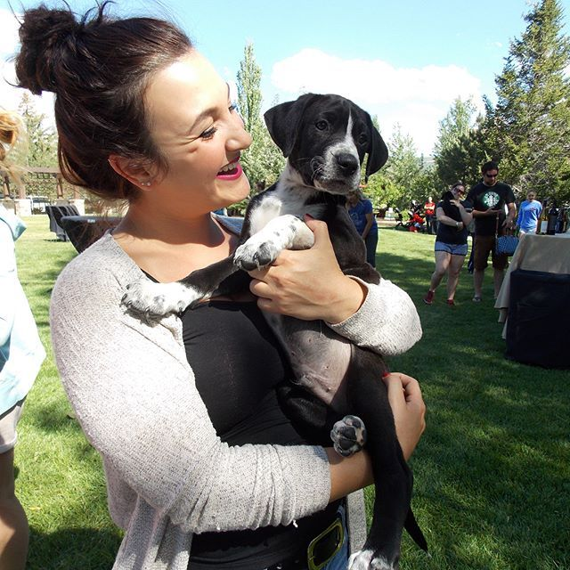 Puppy love filled the air on the Grand Lawn and Rose