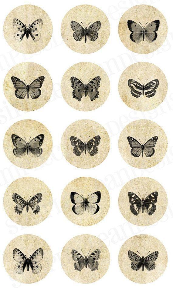 Photo of Schmetterling Tattoo – 300+ Bildideen –  Schmetterling Tattoo – 300+ Bildideen…