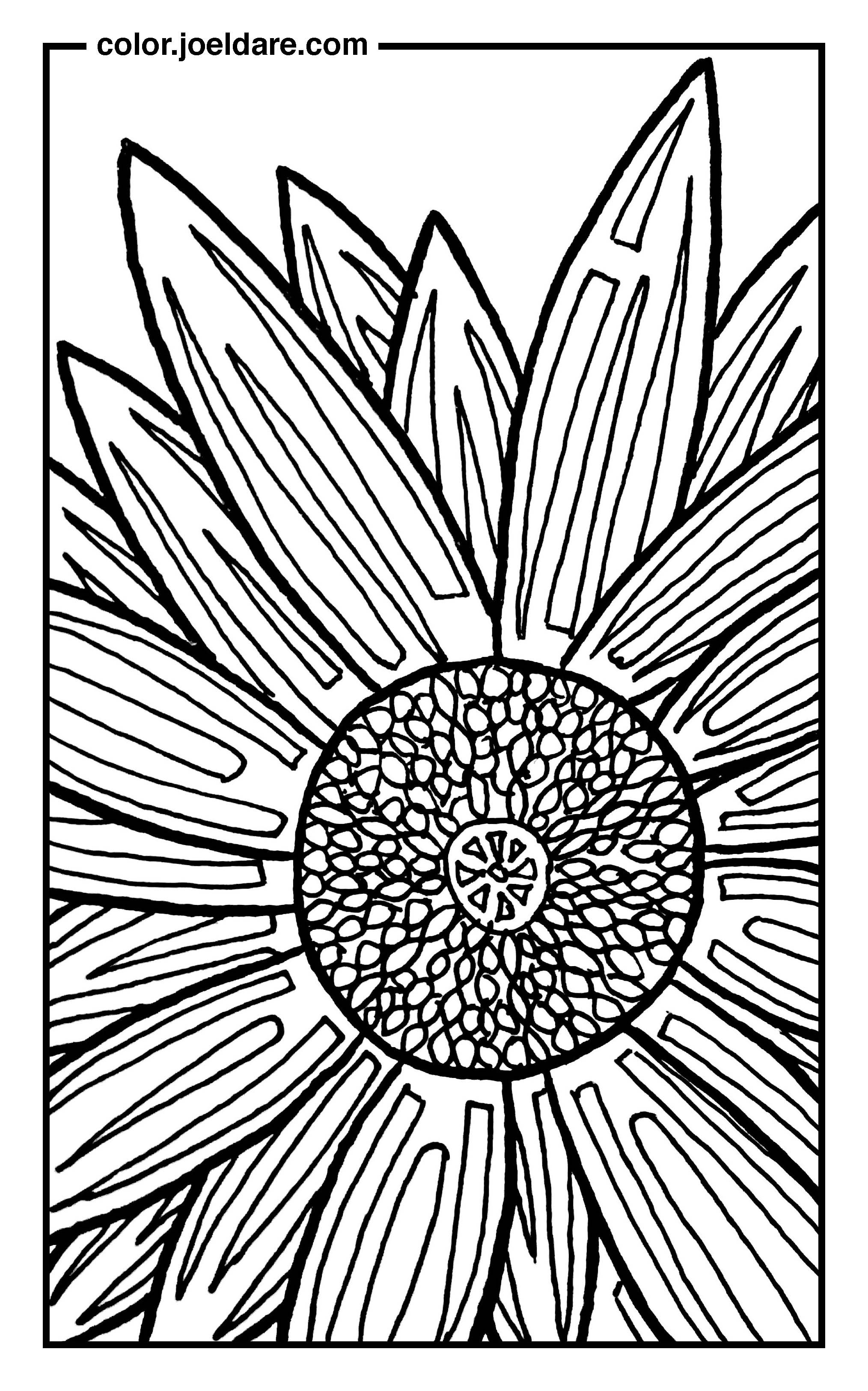 Sunflower Coloring Page - Imgur | color 5 | Pinterest | Sunflowers ...