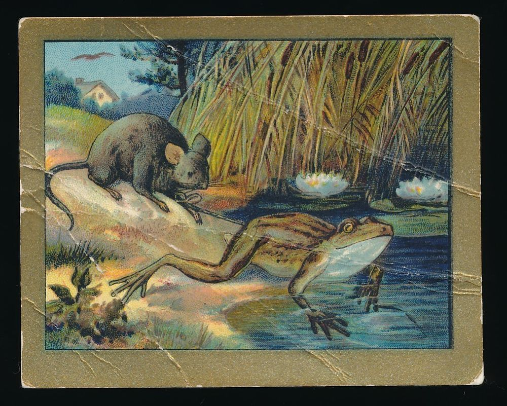 1910 T57 Turkish Trophies Cigarettes cards,  Fable Series - The Mouse & The Frog   ref: eBay