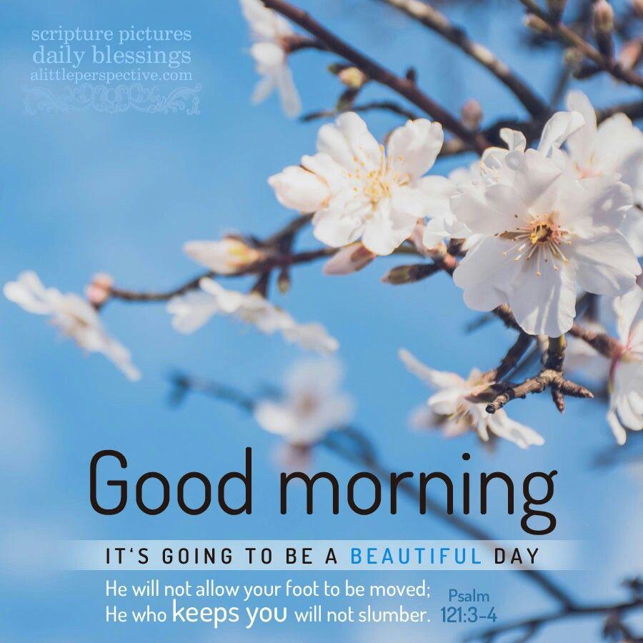 Pin by Karen Gerrity on Greeting | Good morning ...