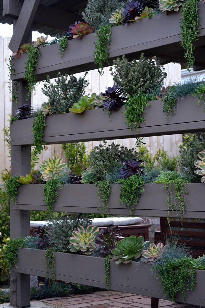 Charmant DIY Vertical Succulent Wall