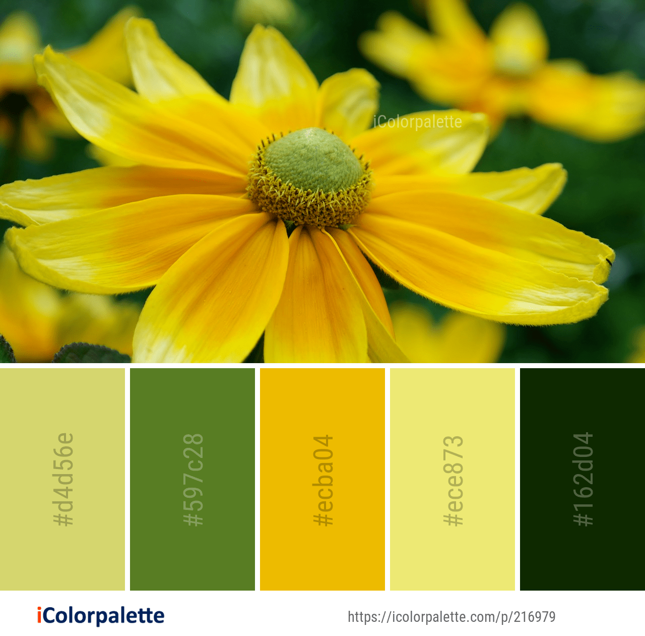 Color Palette Ideas Icolorpalette Colors Inspiration Graphics Design Inspiration Beautiful Colorpalette Color Palette Yellow Color Palette Color Mixing