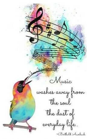 Music Washes Away The Everyday And My Little Phoebe Bird Songbird Display Children Starting Point Music Quotes Music Notes Music Art