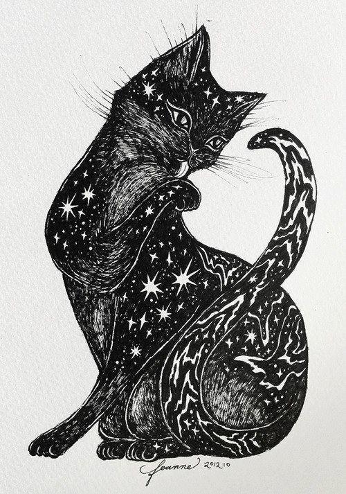 Прикольная картинка кота для экслибриса