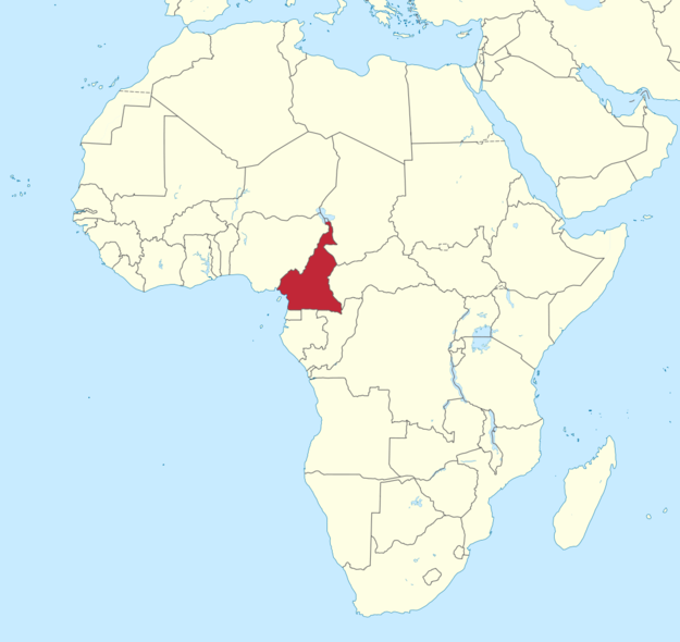 Where Is Cameroon On The Map Of Africa Cameroon is an African country, located here. | Africa map, Africa