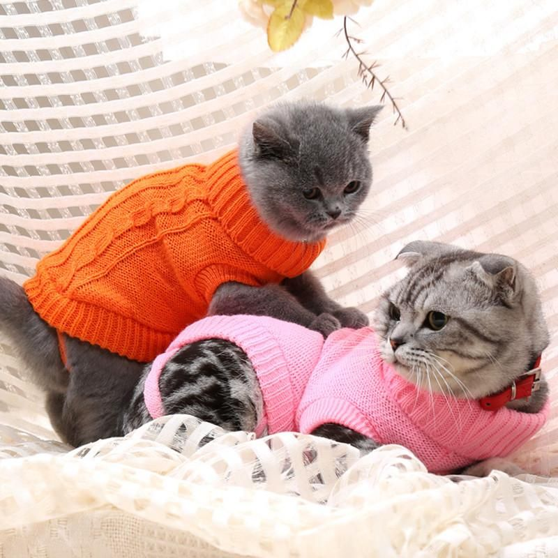 Canadian Hairless Cat Sweater In Nine Colors Cat