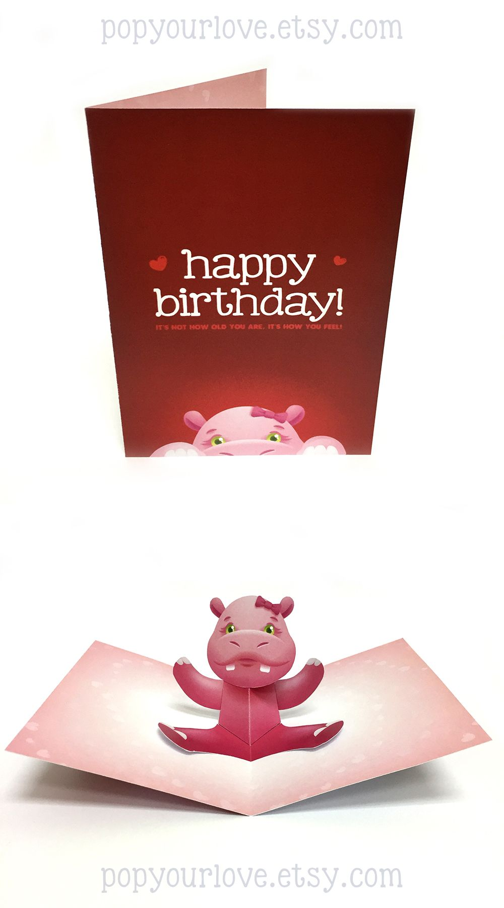 Hippo Card Birthday Card Birthday Pop Up Card Animal Pop Up