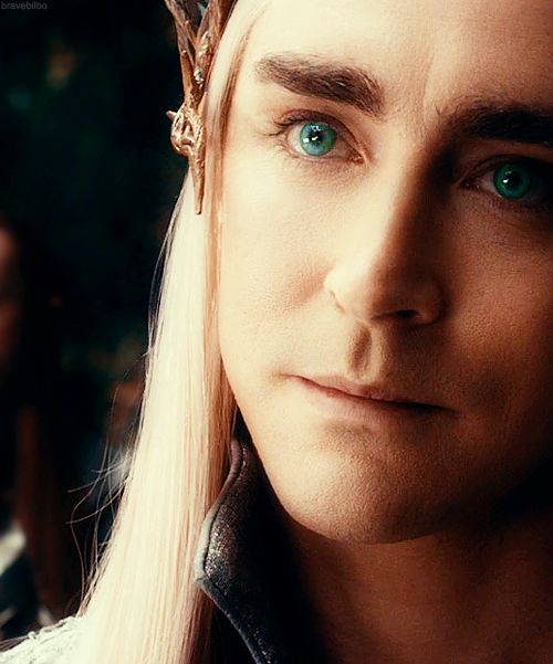 but with a whimper. King Thranduil of Mirkwood.  Oh, my goodness, simply look at that handsome face, those intense eyes, and that slight smile! I think my heart skipped a few beats. :)