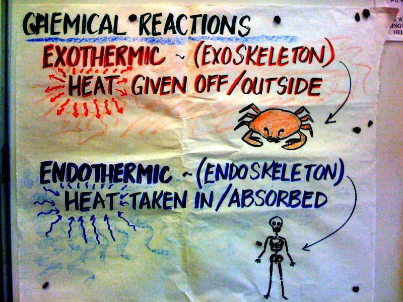 Mr. Gortney's 8th Grade Science Class / Class Notes and Topics