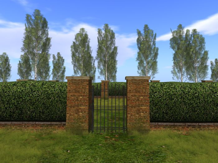 Hedge with Brick Wall and working gate, garden bush with a