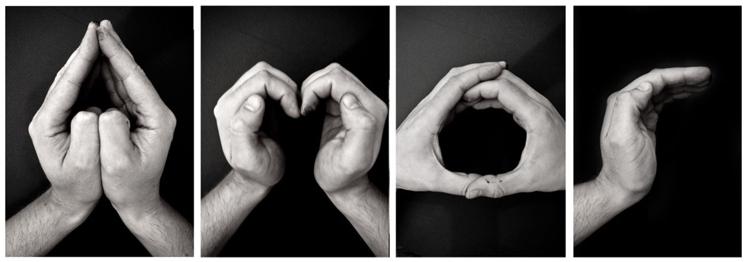 #amor #love #logo #verbicon