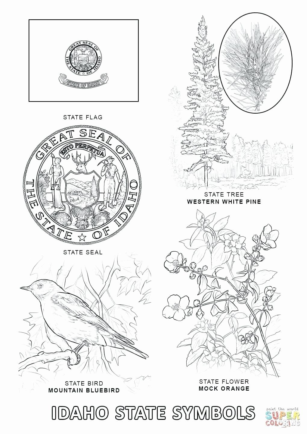 California State Symbols Coloring Pages Unique Alabama State