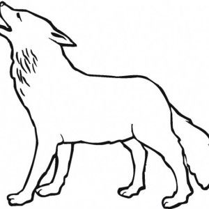 Wolf, Wolf Howling In The Night Coloring Page: Wolf