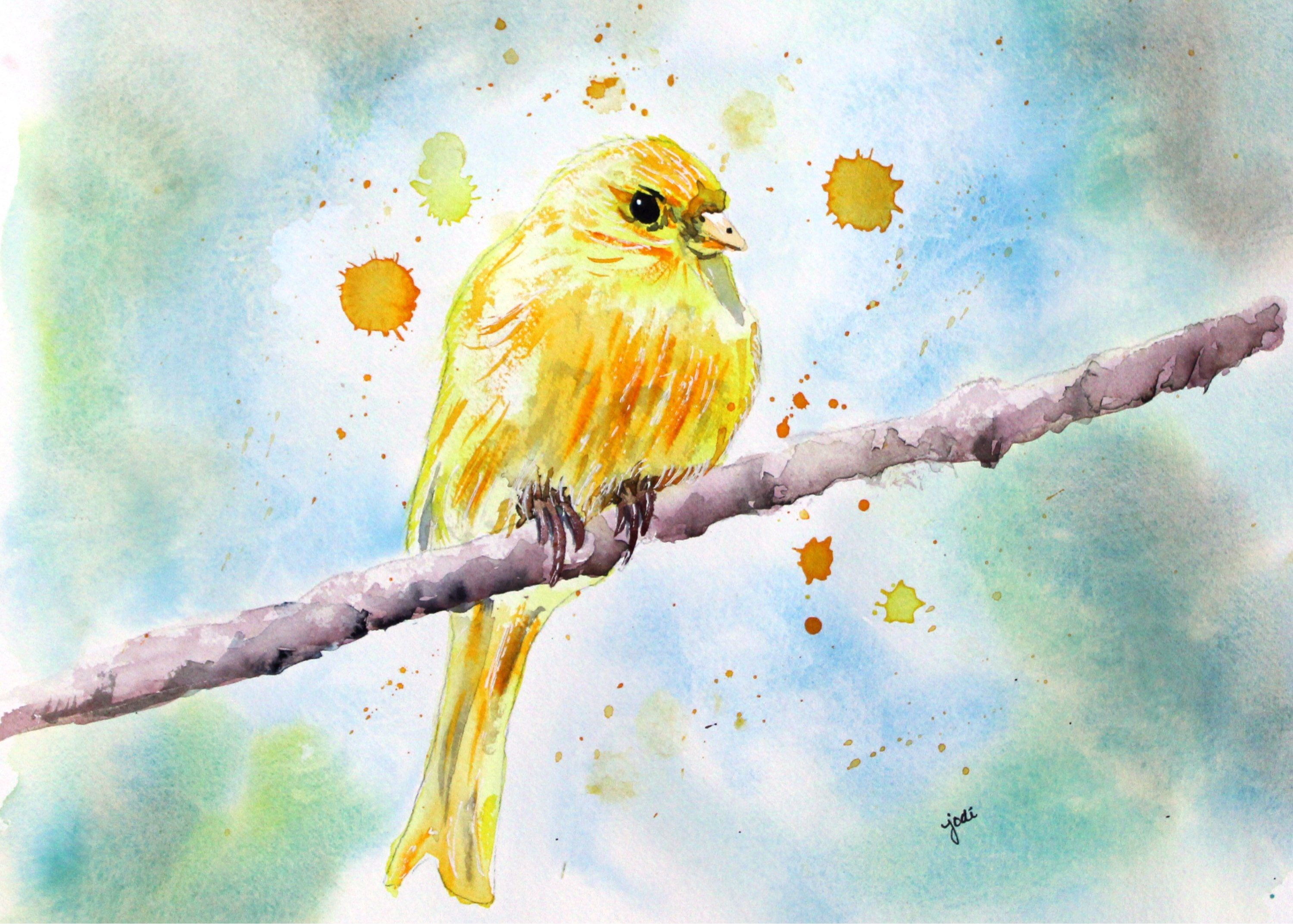 Yellow Canary Watercolor Print Bird Painting Bird Painting