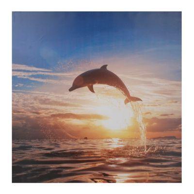 Dolphin Sunrise Canvas Art Print Sunset wallpaper