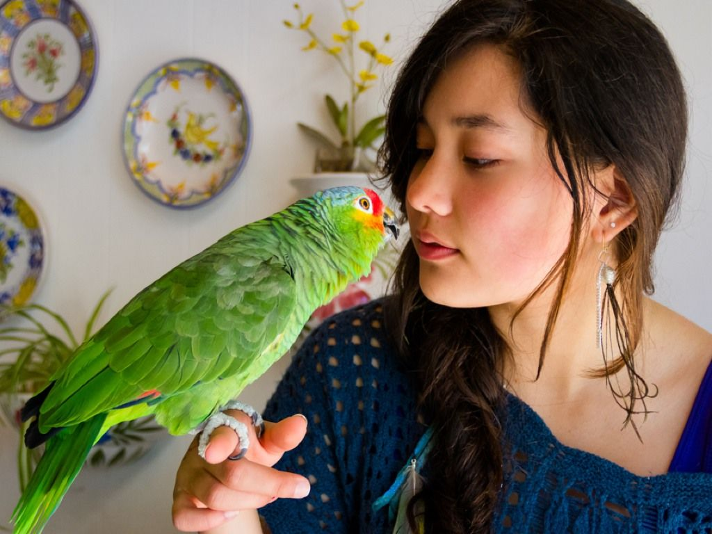 Rescue Unwanted and Abandoned Companion Birds rescues