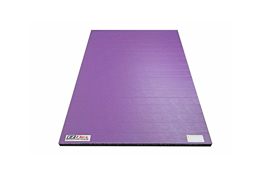 4 X 6 Home Wrestling Mats Durable And Portable I Gift Ideas For Kids