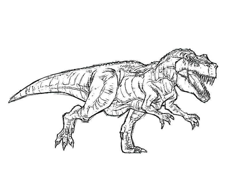 T Rex Coloring Page Free T Coloring Pages Park T Coloring Pages Indominus Rex Colouring Pages Jurassic Park T Rex Coloring Pages Dinosaur Coloring Pages