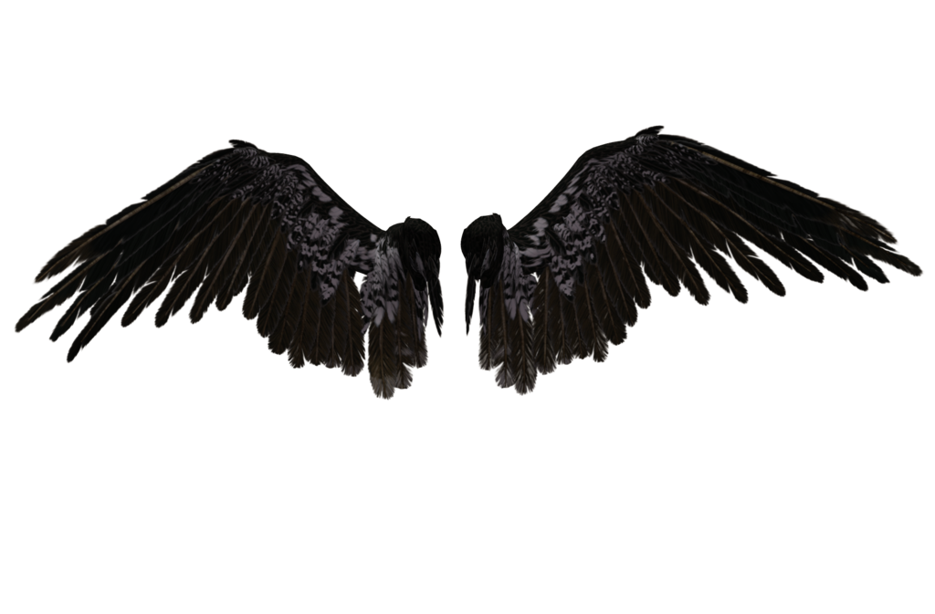 Angel Wings Png 06 By Thy Darkest Hour On Clipart Library Clip Art Library Wings Png Angel Wings Png Wings