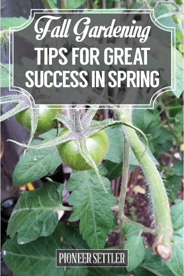 Fall Gardening Ideas Part - 50: Check Out Fall Gardening Tips For Great Success In Spring At  Http://pioneersettler