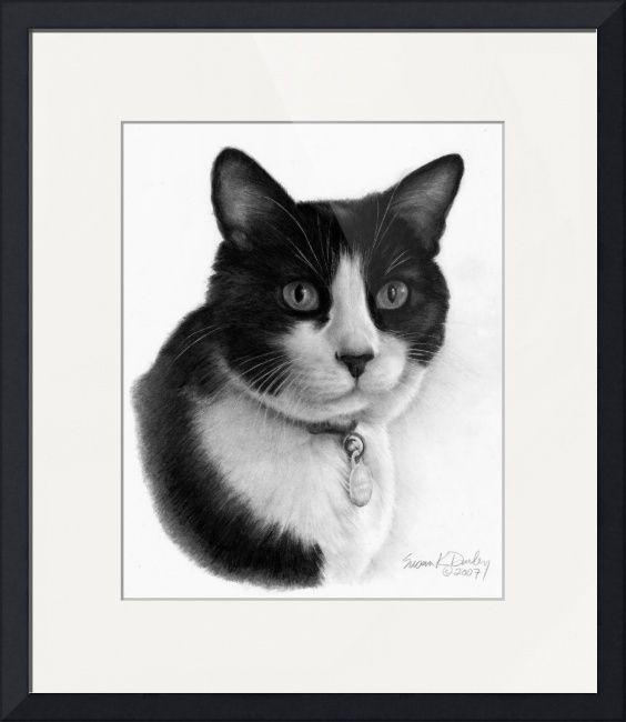 Shirley Tuxedo Cat By Susan Donley Cat Art Cat Artwork Tuxedo Cat Art