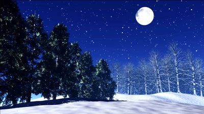 Snow Falling From the Sky | stars twinkle in the night sky, snow fall in winter, trees shake in ...