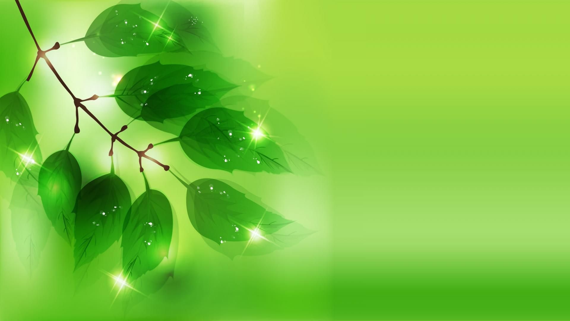 green-background-vector-wallpaper-wallpaper-green-for-desktop-background-abstract-islamic-light ...