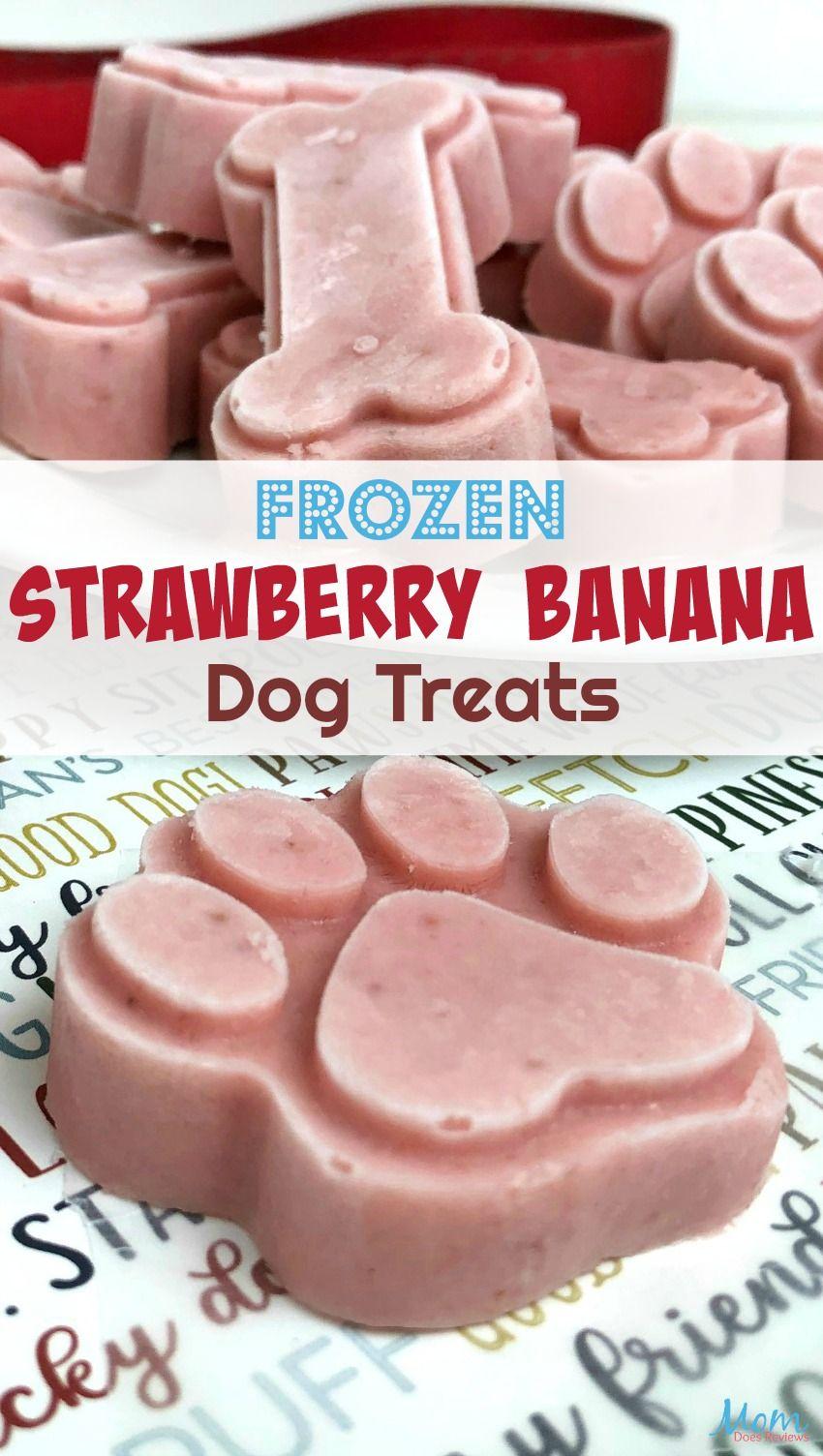 Frozen Strawberry Banana Dog and People Treats!