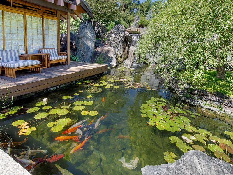 Japanese garden, pond and koi Jardines y plantas Pinterest - paisaje jardin