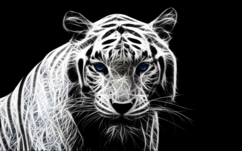 3D White Tiger Wallpaper Tiger wallpaper, Tiger pictures