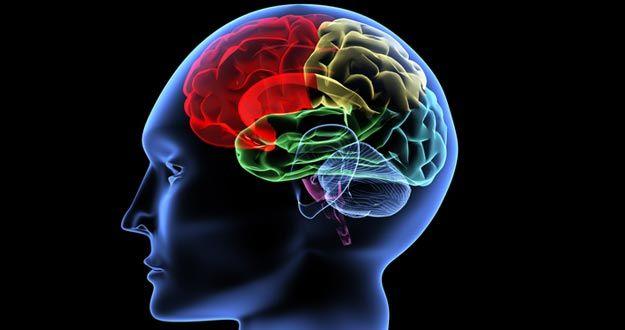Interesante investigación recientemente publicada sobre nuestro cerebro y su conexión con la música