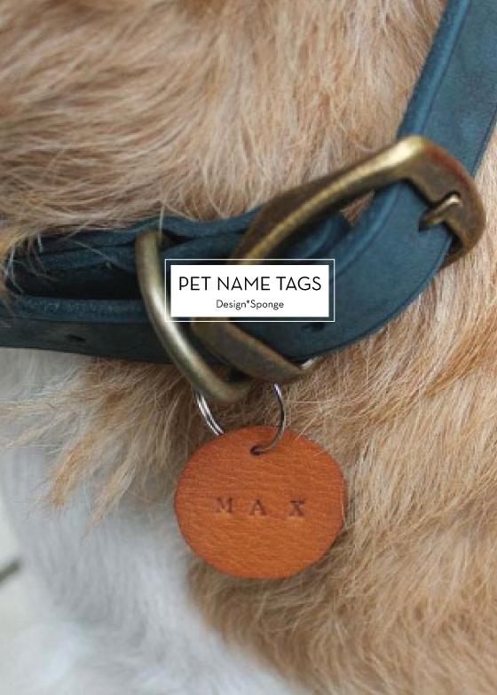 12 December Diys Dog Tags Pet Pet Name Tags Pet Tags