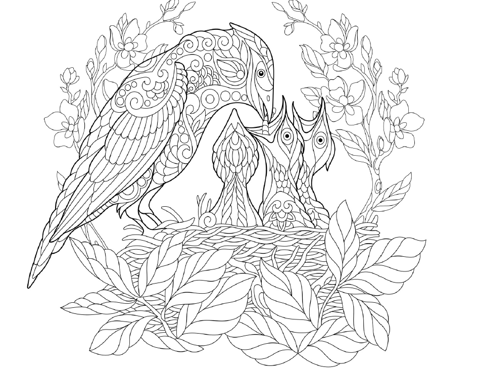 Members Area Coloring Book Cafe Bird Coloring Pages Coloring Books Coloring Book Pages