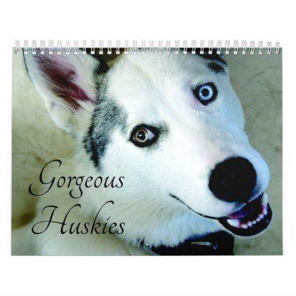 2020 Gorgeous Siberian Husky Dog Calendar Zazzle Com Dog